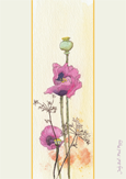 Pink Poppy by Judy Ball
